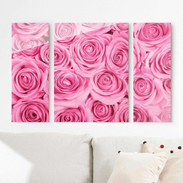 Glasbild mehrteilig - Rosa Rosen - 3-teilig