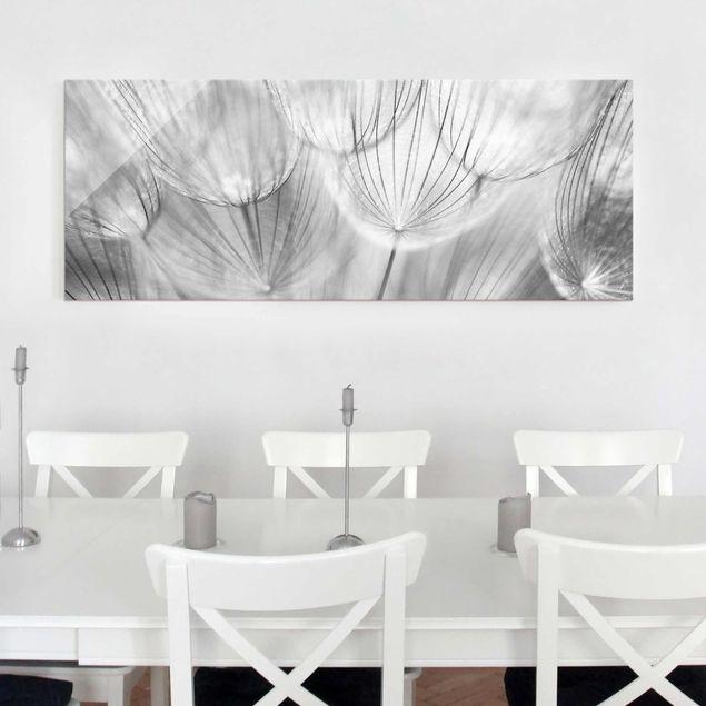 Glasbild - Pusteblumen Makroaufnahme in schwarz weiss - Panorama Quer - Blumenbild Glas