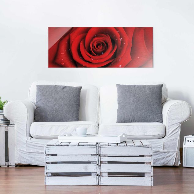 Glasbild - Rote Rose mit Wassertropfen - Panorama Quer - Blumenbild Glas