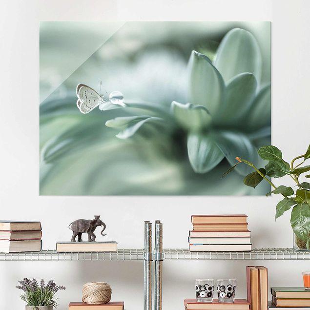 Glasbild - Schmetterling und Tautropfen in Pastellgrün - Querformat 3:4