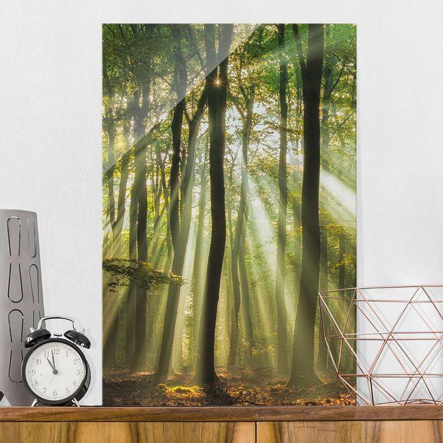 Glasbild - Sonnentag im Wald - Hoch 2:3