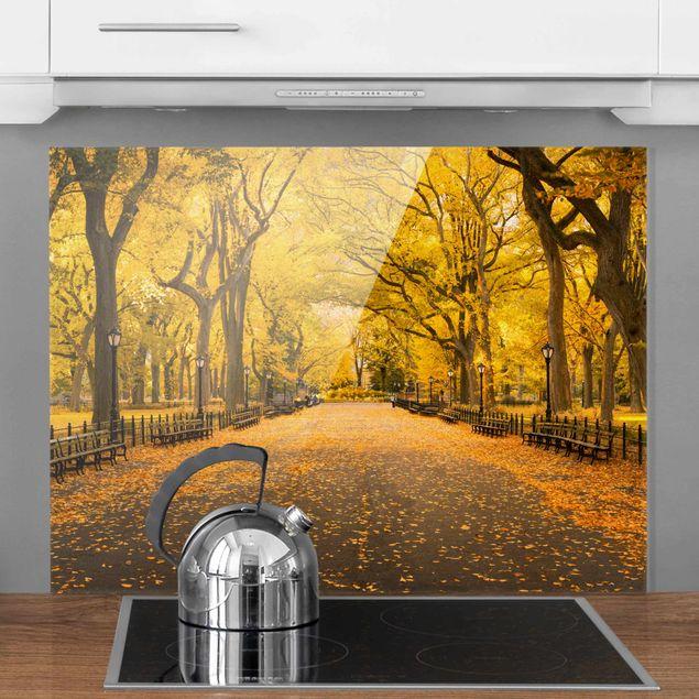 Spritzschutz Glas - Herbst im Central Park - Querformat 4:3