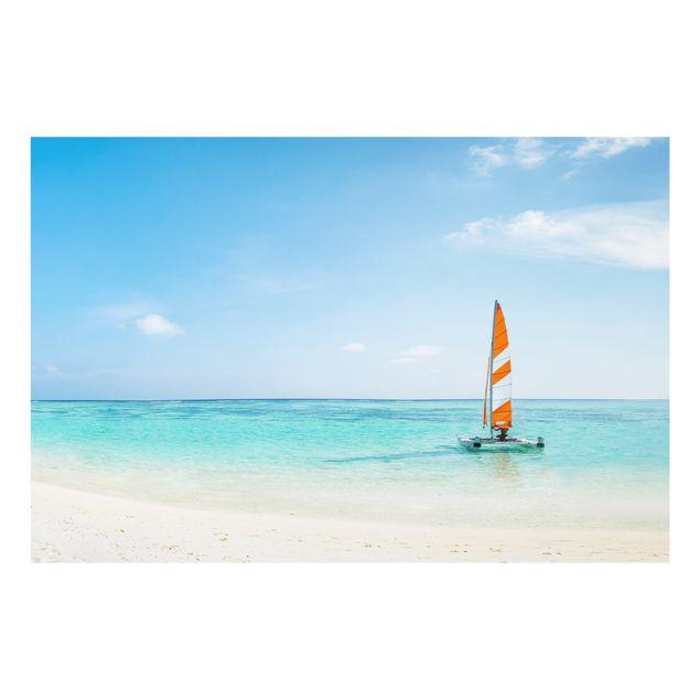 Spritzschutz Glas - Katamaran auf dem Indischen Ozean - Querformat 3:2