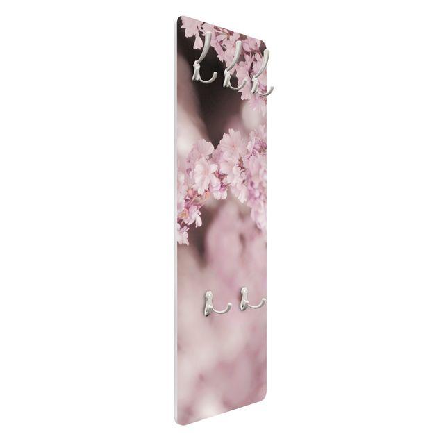 Garderobe - Kirschblüte im Violetten Licht