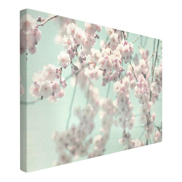 Leinwandbild - Kirschblütentanz auf Leinenstruktur - Querformat 3:2