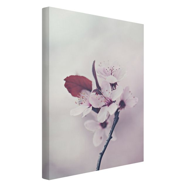 Leinwandbild - Kirschblütenzweig Altrosa - Hochformat 2:3