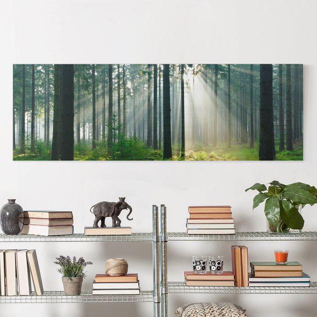 Leinwandbild - Enlightened Forest - Panorama Quer
