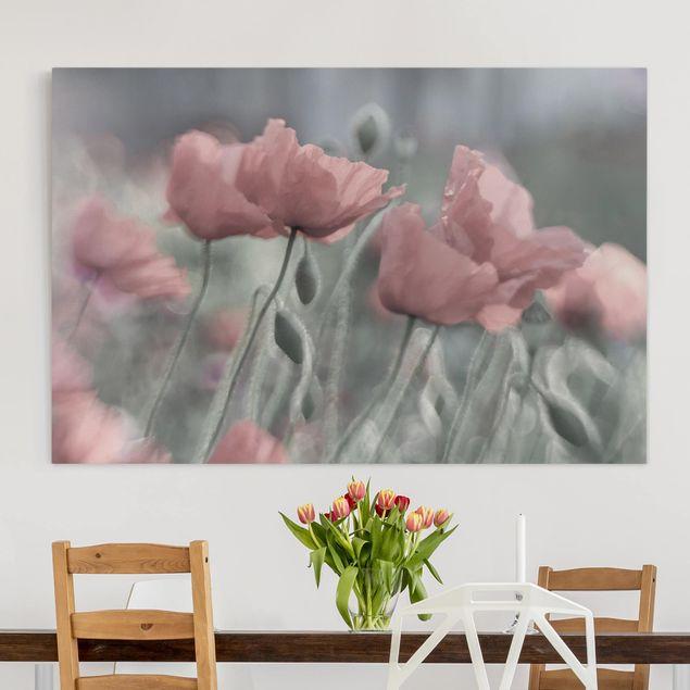 Leinwandbild - Malerische Mohnblumen - Quer 3:2