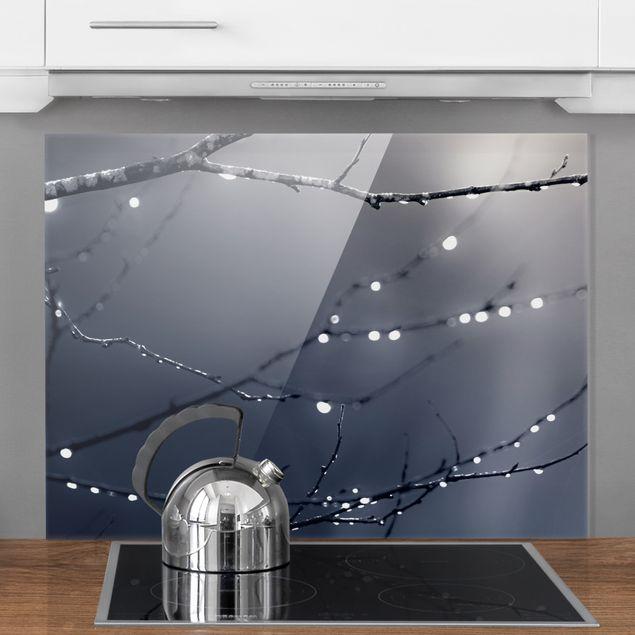 Spritzschutz Glas - Lichttropfen am Birkenzweig - Querformat 4:3