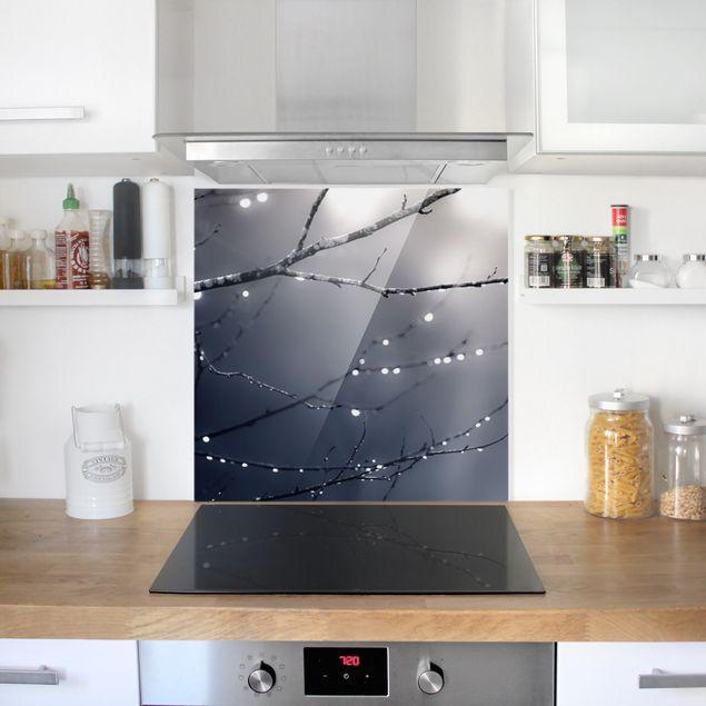 Spritzschutz Glas - Lichttropfen am Birkenzweig - Quadrat 1:1