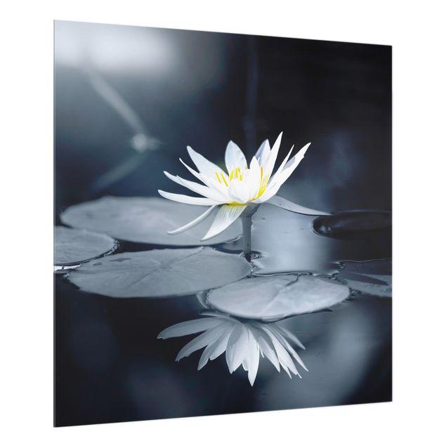 Spritzschutz Glas - Lotus Spiegelung im Wasser - Quadrat 1:1