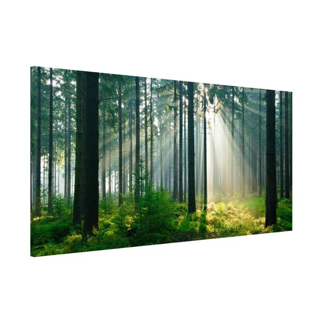 Magnettafel - Enlightened Forest - Memoboard Panorama Quer