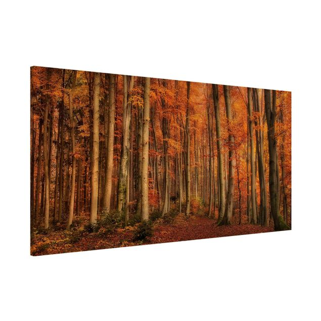 Magnettafel - Herbstspaziergang - Memoboard Panorama Quer