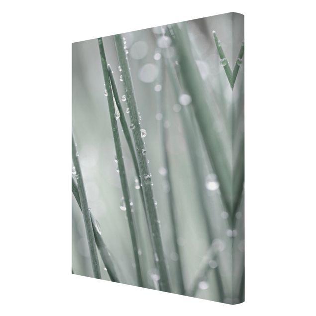 Leinwandbild - Makroaufnahme Wasserperlen am Gras - Hochformat 2:3