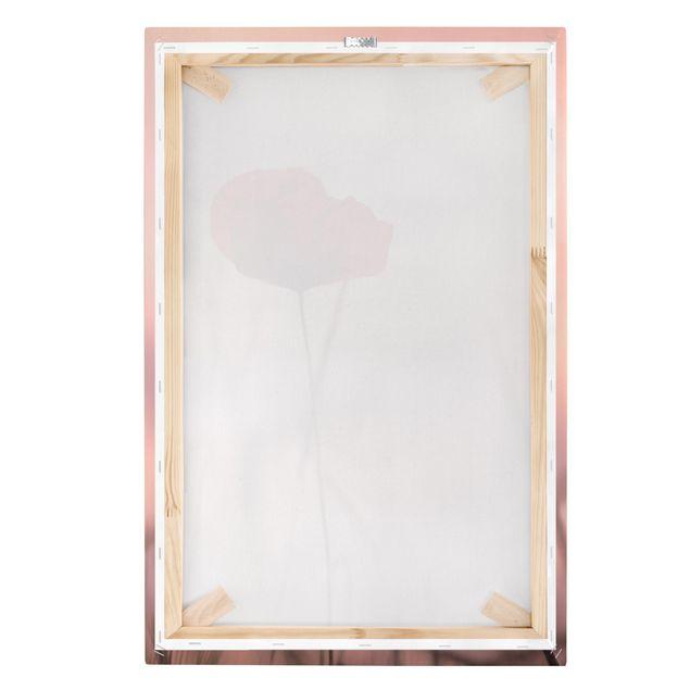 Leinwandbild - Mohnblüte in der Dämmerung - Hochformat 2:3