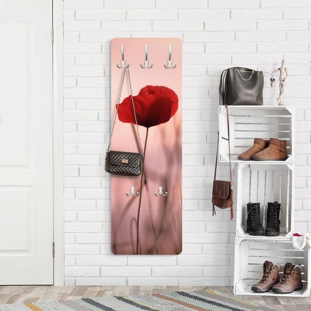 Garderobe - Mohnblüte in der Dämmerung