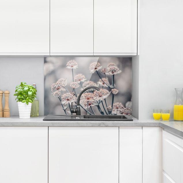 Spritzschutz Glas - Mystischer Blütenstrauch - Querformat 3:2