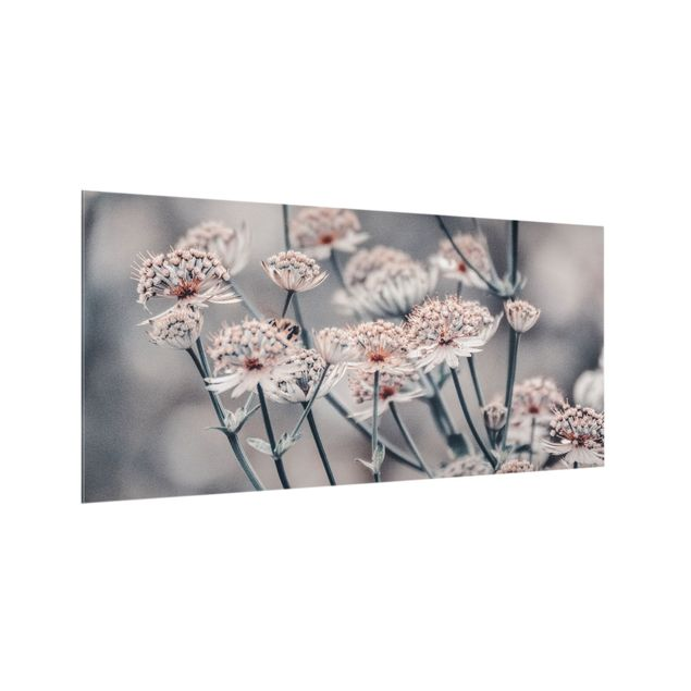 Spritzschutz Glas - Mystischer Blütenstrauch - Querformat 2:1