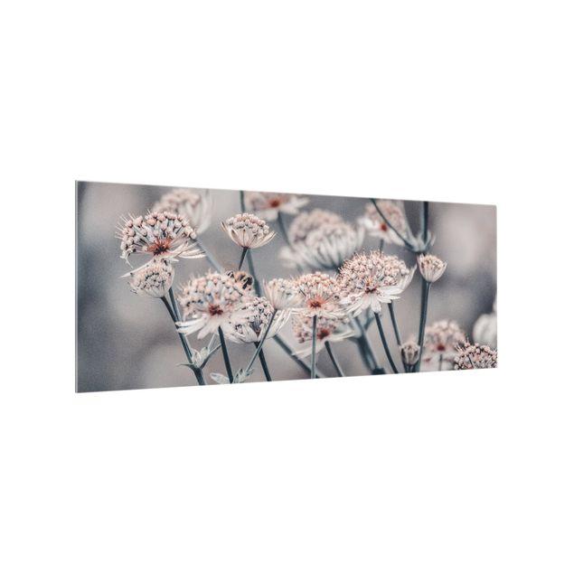 Spritzschutz Glas - Mystischer Blütenstrauch - Panorama 5:2