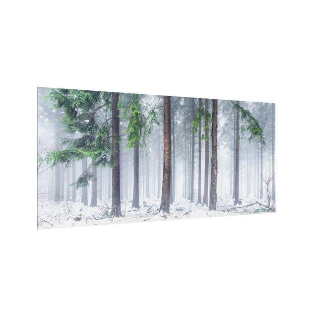 Spritzschutz Glas - Nadelbäume im Winter - Querformat 2:1