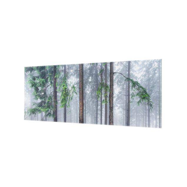 Spritzschutz Glas - Nadelbäume im Winter - Panorama 5:2