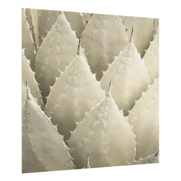 Spritzschutz Glas - Organische Elemente - Quadrat 1:1