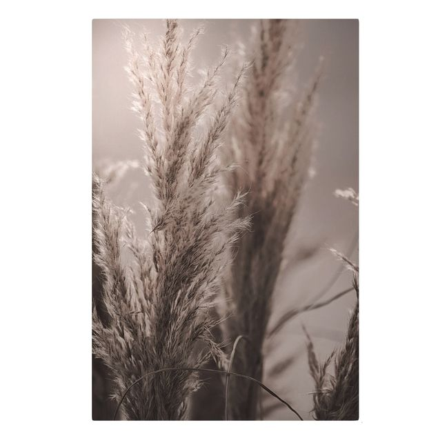 Leinwandbild - Pampasgras im Spätherbst - Hochformat 2:3