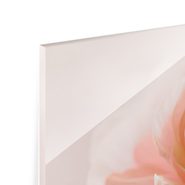 Spritzschutz Glas - Rosa Blüte im Fokus - Querformat 2:1