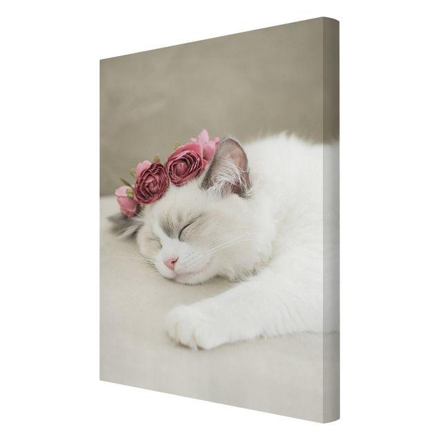 Leinwandbild - Schlafende Katze mit Rosen - Hochformat 2:3