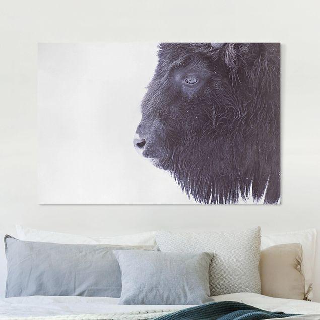 Leinwandbild - Schwarzer Büffel im Portrait - Querformat 3:2