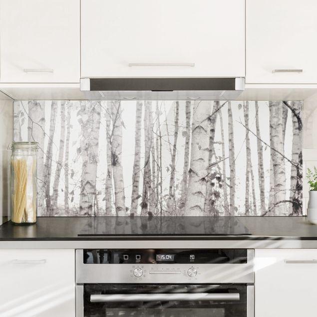 Spritzschutz Glas - Silberbirke im weißen Licht - Panorama 5:2