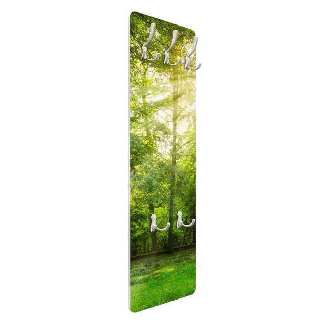 Garderobe - Spaziergang im Wald