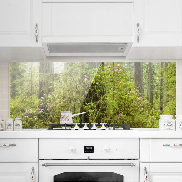 Spritzschutz Glas - Del Norte Coast Redwoods State Park Kalifornien - Panorama