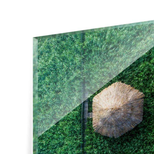 Spritzschutz Glas - Strohhütte im hohen Schilf - Querformat 3:2
