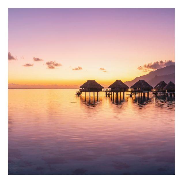 Spritzschutz Glas - Sunset Dream - Quadrat 1:1