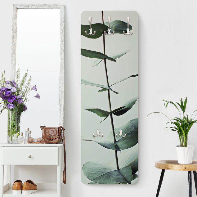 Garderobe - Symmetrischer Eukalyptuszweig
