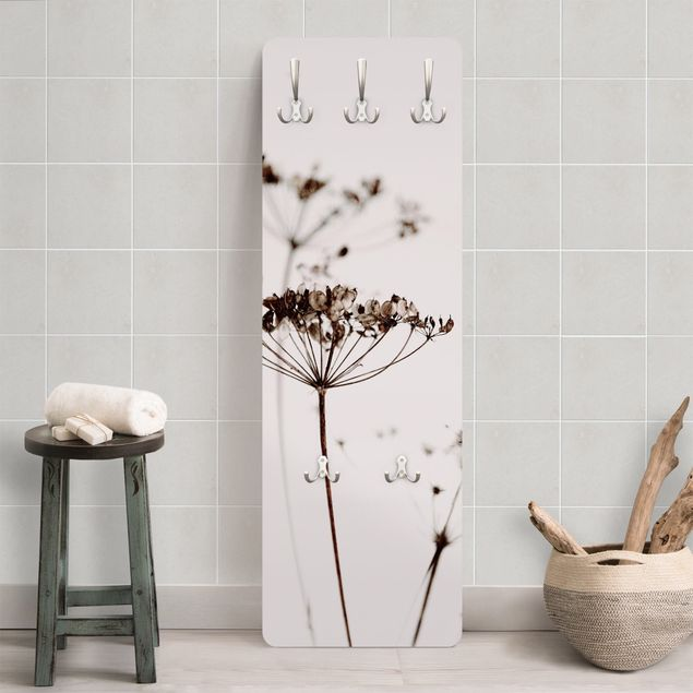 Garderobe - Trockenblume im Schatten