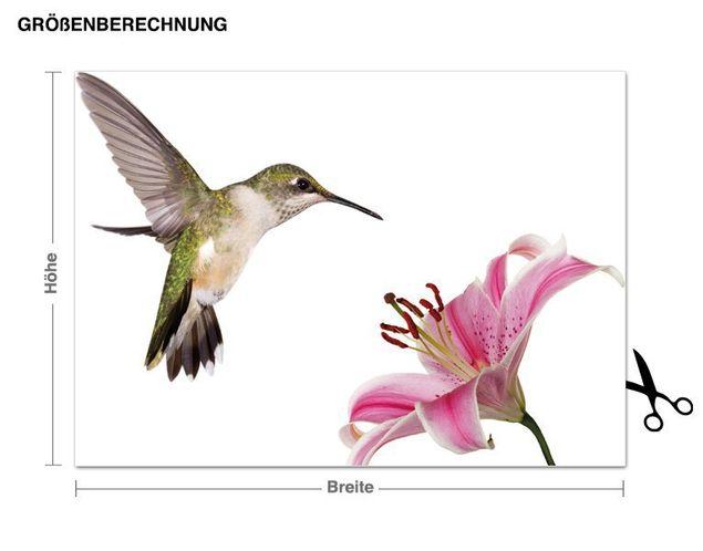 Wandsticker Kolibri