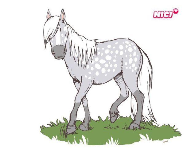 Wandtattoo Horse Club Apfelschimmel laufend