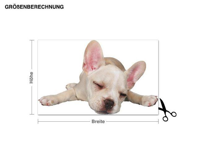 Wandtattoo Schlafende französische Bulldogge