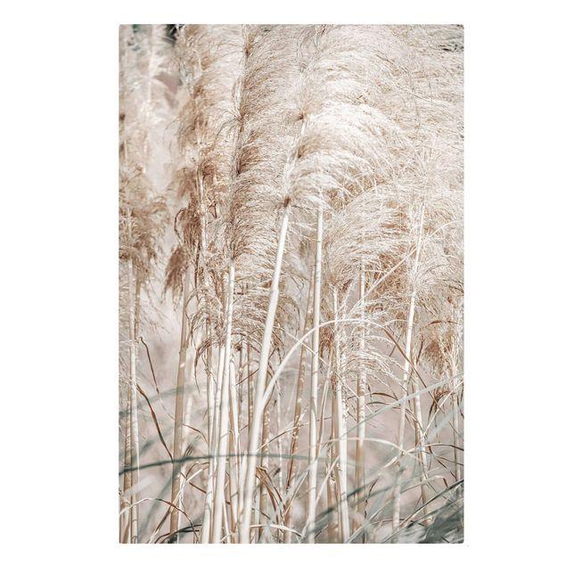 Leinwandbild - Warmes Pampasgras im Sommer - Hochformat 2:3