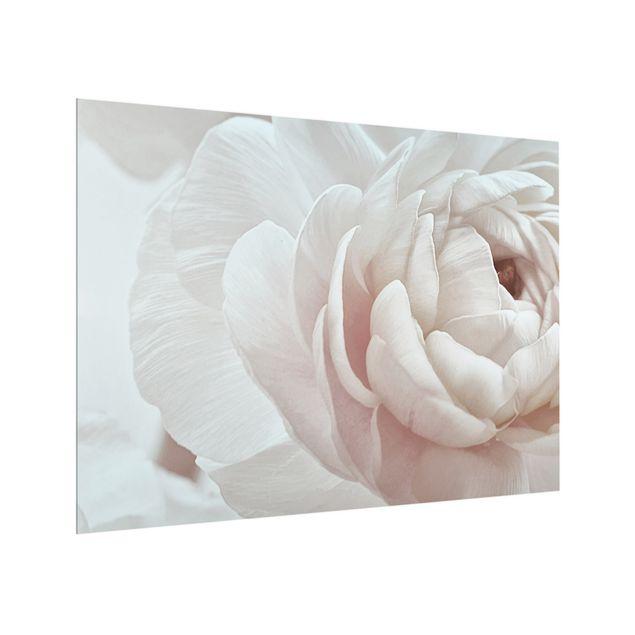 Spritzschutz Glas - Weiße Blüte im Blütenmeer - Querformat 4:3