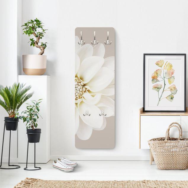 Garderobe - Weiße Dahlie auf Creme