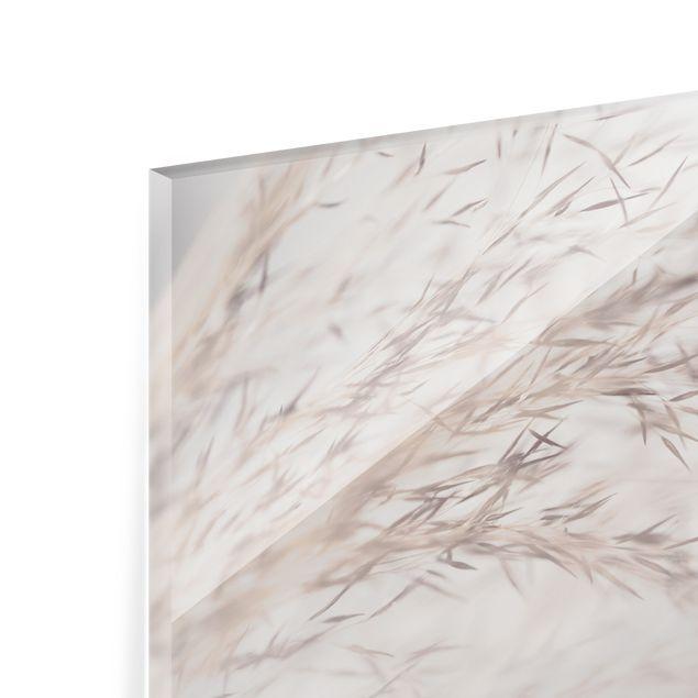 Spritzschutz Glas - Wiesengras Close Up - Querformat 3:2