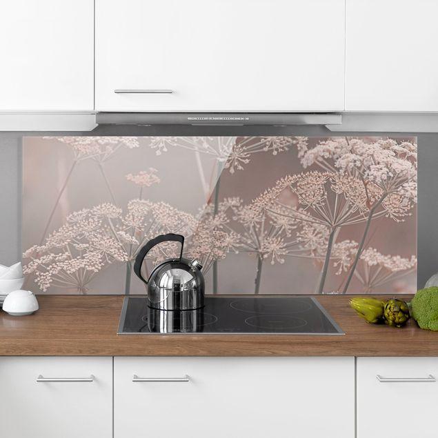 Spritzschutz Glas - Wilde Doldenblüten - Panorama 5:2