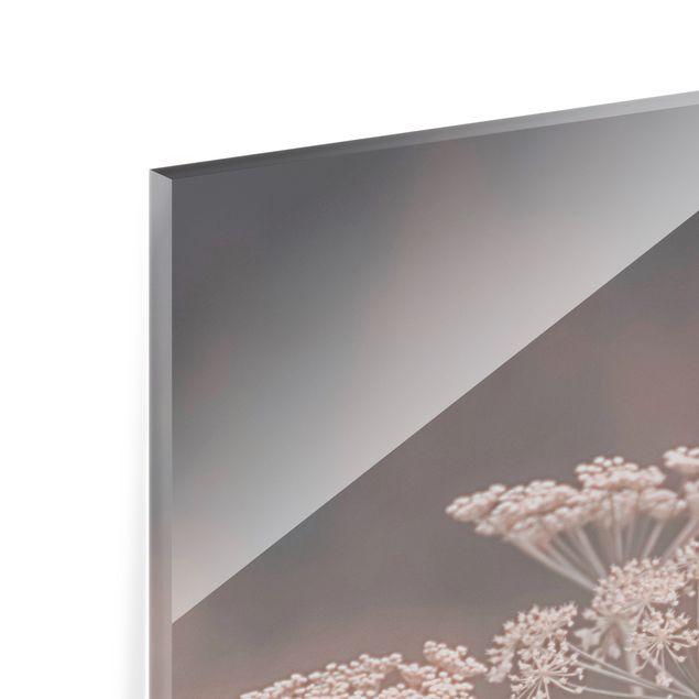 Spritzschutz Glas - Wilde Doldenblüten - Quadrat 1:1