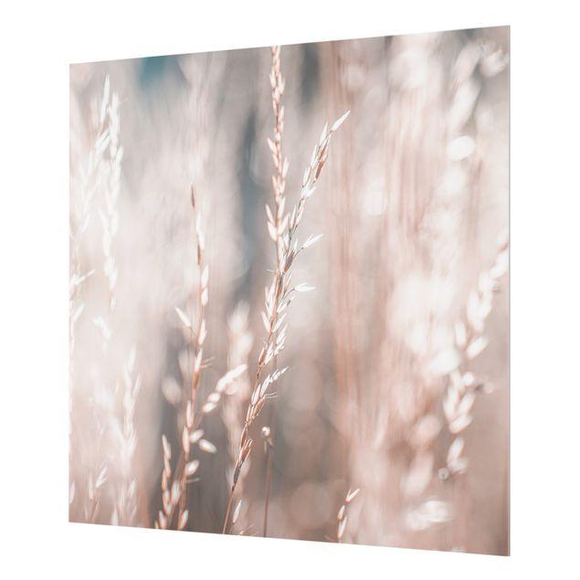 Spritzschutz Glas - Wilde Wiese - Quadrat 1:1