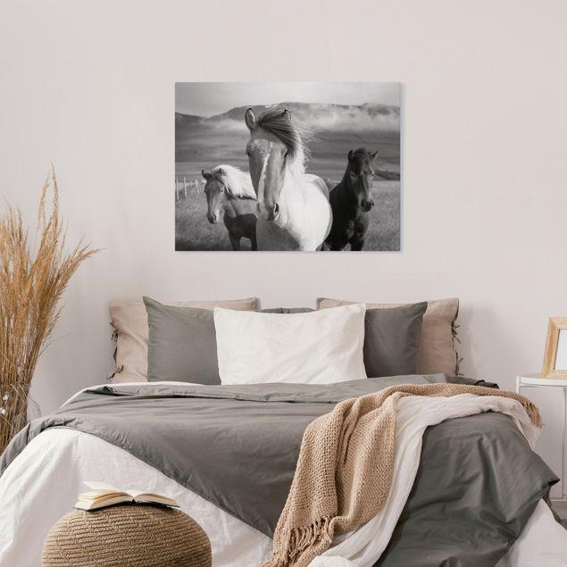 Leinwandbild - Wildpferde Schwarz-Weiß - Querformat 4:3