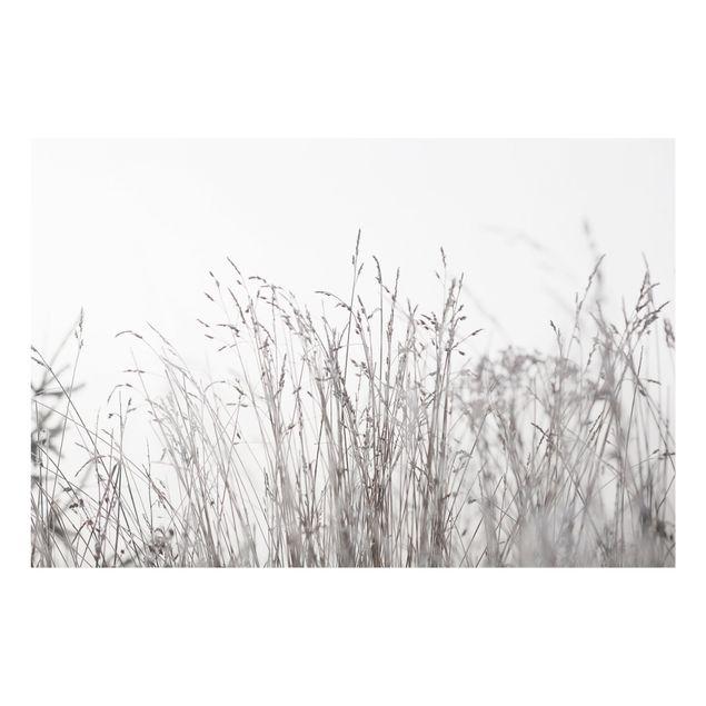 Spritzschutz Glas - Winterliche Gräser - Querformat 3:2