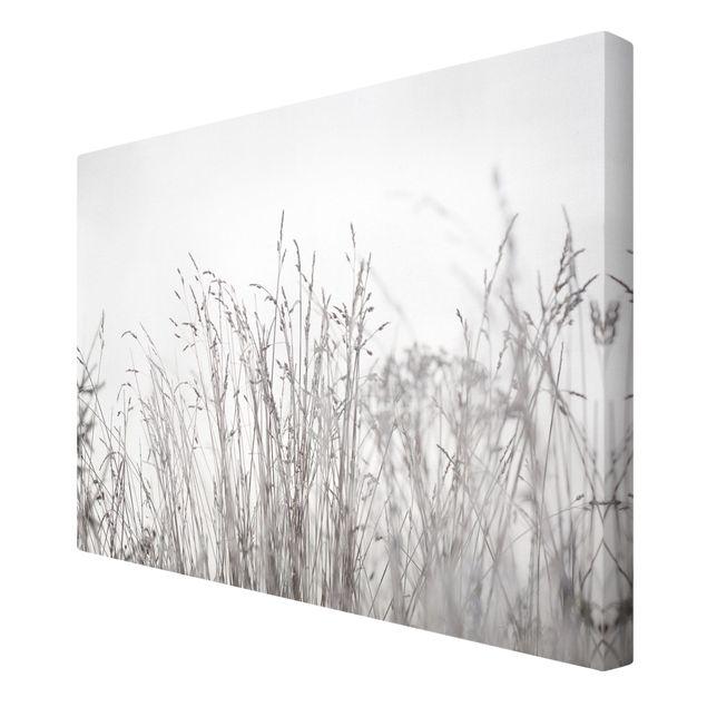 Leinwandbild - Winterliche Gräser - Querformat 3:2